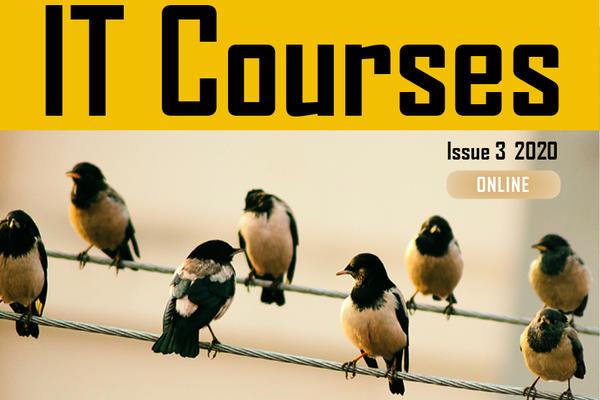 Brochure cover - words say 'IT Courses, issue 3 2020, online' Image: birds on wires (online)